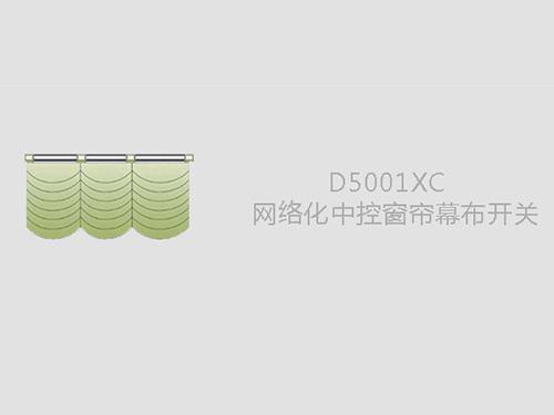 D5001XC