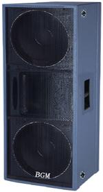 专业音箱  DS-822
