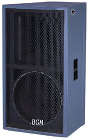 专业音箱  DS-812