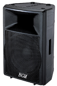 专业音箱  DS-300