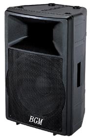 专业音箱  DS-100