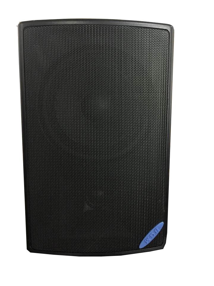 专业音箱  C26